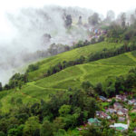 HOLIDAY TRIP TO DARJEELING